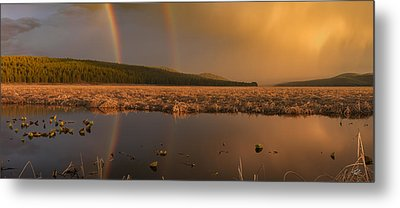 Double Rainbow Light Metal Print by Leland D Howard