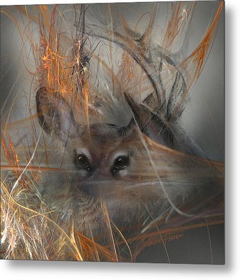 Double Vision - Look Close Metal Print by Jackie Flaten