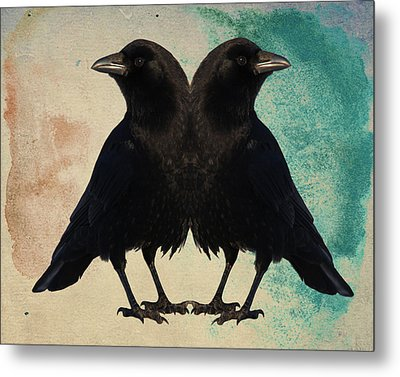 Twin Beaks Metal Print by Gothicrow Images