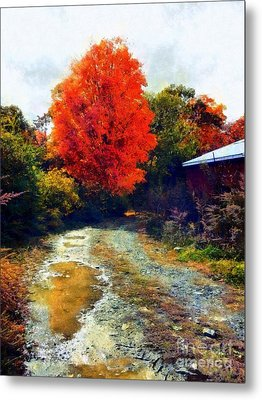 Metal Print featuring the photograph Down A Country Road - Autumn by Janine Riley