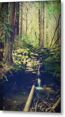 Down At The Old Dam Metal Print by Laurie Search