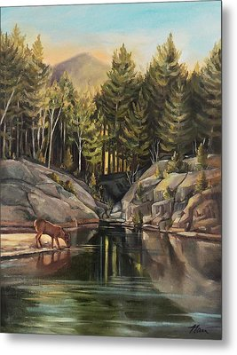 Down By The Pemigewasset River Metal Print by Nancy Griswold