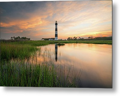 Metal Print featuring the photograph Down In The Swamp by Bernard Chen