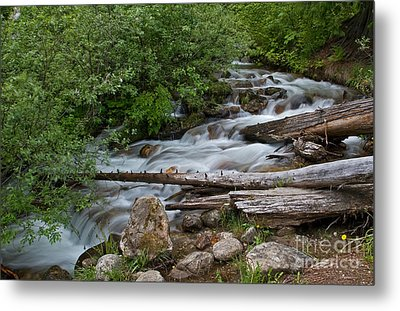 Down The Mountain Metal Print by Robert Pilkington