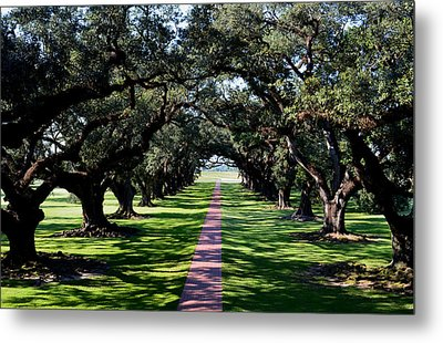 Down The Path Metal Print by Maggy Marsh