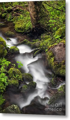 Downstream From The Waterfalls Metal Print by Madonna Martin