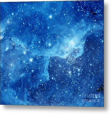 Dr22 In The Cygnus Region Of The Sky Metal Print by American School