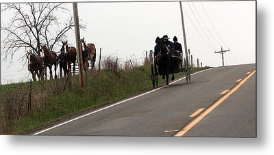 Draft Horses And Amish Metal Print by R A W M