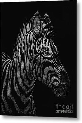 Dragon Zebra Metal Print by Stanley Morrison