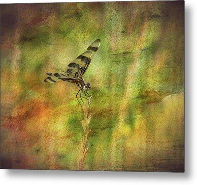 Dragonfly Art Metal Print