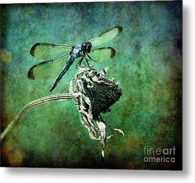 Dragonfly Art Metal Print by Sari Sauls