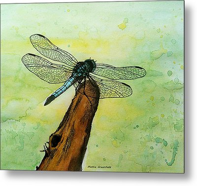 Dragonfly Metal Print by Mamie Greenfield
