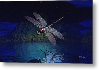 Dragonfly Night Reflections Metal Print