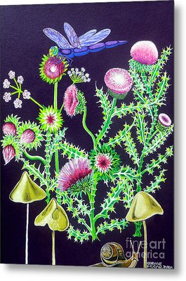 Dragonfly Thistle And Snail Metal Print by Genevieve Esson