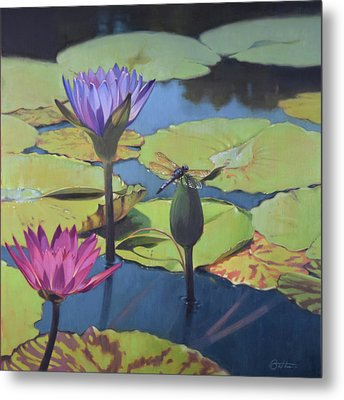Dragonfly Metal Print by Todd Baxter