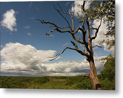 Dramatic Overlook Metal Print by Jennifer Ancker