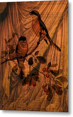 Draw Back The Curtain Metal Print by Sarah Vernon