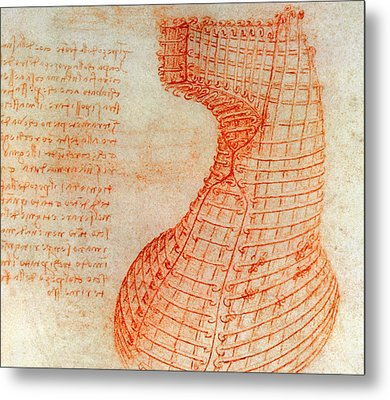 Drawing Of The Ironwork Casting Mould For The Head Of The Sforza Horse Metal Print by Leonardo Da Vinci