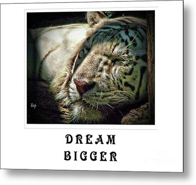 Metal Print featuring the photograph Dream Bigger by Traci Cottingham