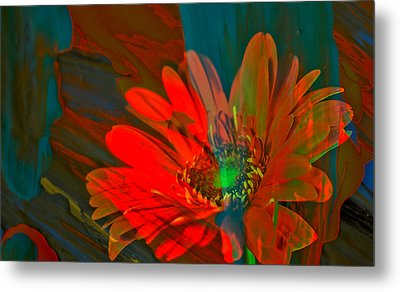 Metal Print featuring the photograph Dreaming Of Flowers by Jeff Swan