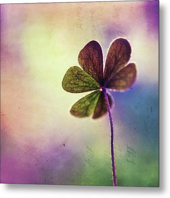 Dreaming Of You Metal Print by Tanjica Perovic