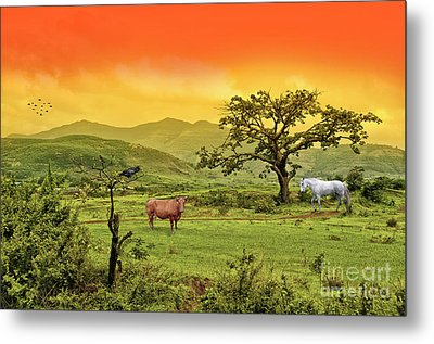 Metal Print featuring the photograph Dreamland by Charuhas Images