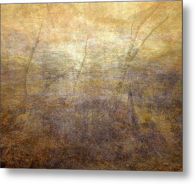 Dreamscape Metal Print by Leland D Howard
