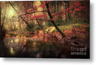 Dreamy Autumn Forest Metal Print