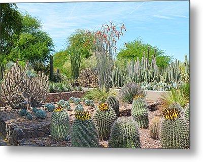 Dreamy Desert Cactus Metal Print