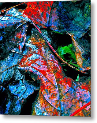 Drenched In Color Metal Print by Gwyn Newcombe