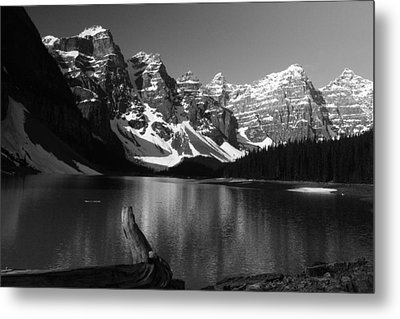 Drift Wod On Lake Moraine Metal Print
