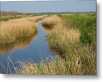 Metal Print featuring the photograph Drifting by Margaret Palmer