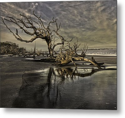 Driftwood Beach Metal Print