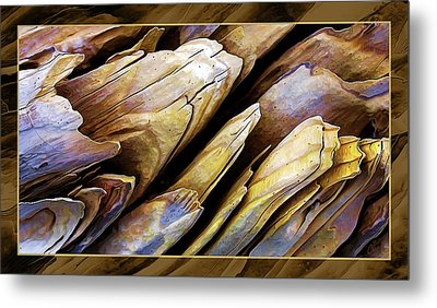 Driftwood Edges Metal Print by ABeautifulSky Photography