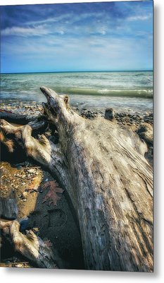 Metal Print featuring the photograph Driftwood On Beach - Grant Park - Lake Michigan Shoreline by Jennifer Rondinelli Reilly - Fine Art Photography