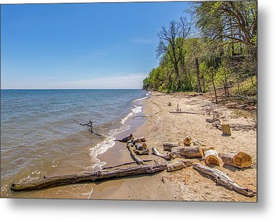 Metal Print featuring the photograph Driftwood On The Beach by Charles Kraus