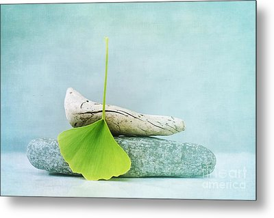 Driftwood Stones And A Gingko Leaf Metal Print