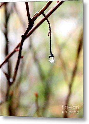 Drop Of Rain Metal Print