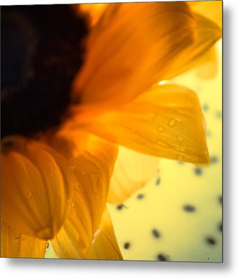 Metal Print featuring the photograph Droplets by Bobby Villapando