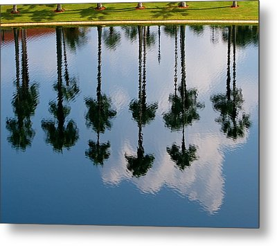Metal Print featuring the photograph Drowning Palms by Ron Dubin