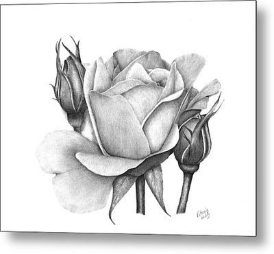 Drum Rose Metal Print