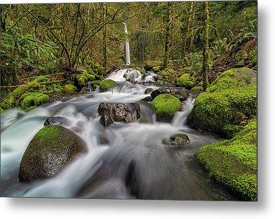 Dry Creek Falls In Springtime Metal Print by David Gn