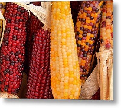 Dry Indian Corn Metal Print by Jeff Lowe