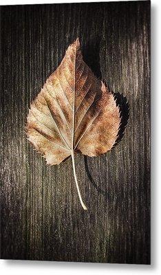 Dry Leaf On Wood Metal Print