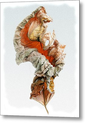 Metal Print featuring the photograph Dry Leaf by Vladimir Kholostykh