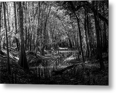 Drying Creek Bed Metal Print by Marvin Spates