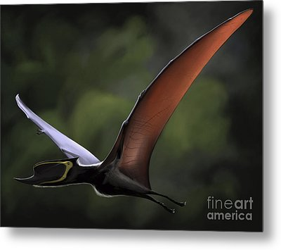 Dsungaripterus With Wings Spread Metal Print by Michele Dessi