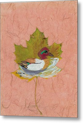 Duck On Pond Metal Print