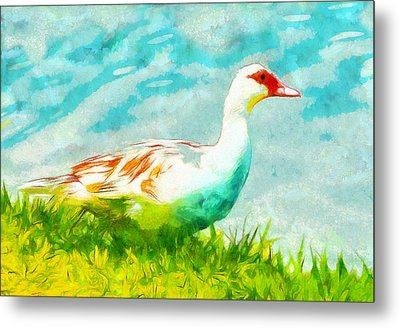 Ducking Around Metal Print by Carlos Vieira