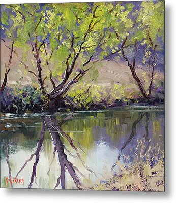 Duckmaloi River Reflections Metal Print by Graham Gercken